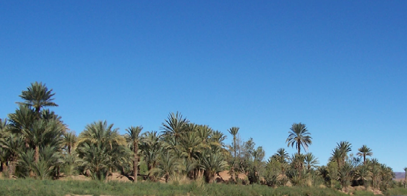 4 days Tour to Zagora