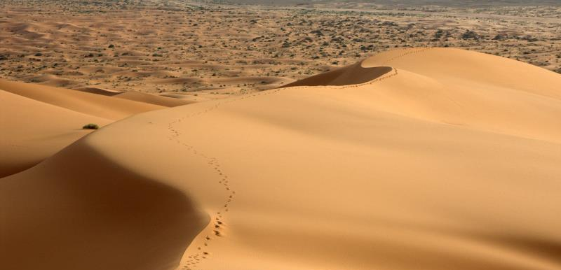 4 Days Tour to Merzouga dunes